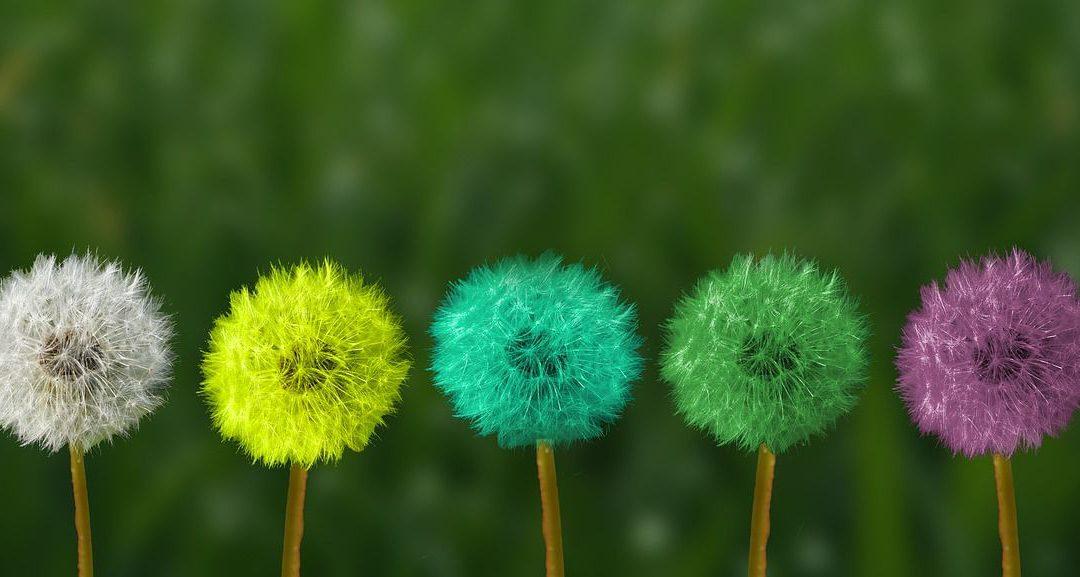 Soft Skills, qué son y por qué son tan importantes en el mundo profesional.